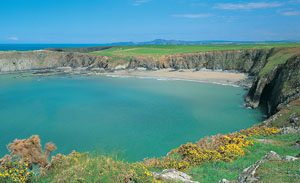Pembrokeshire Beaches Best