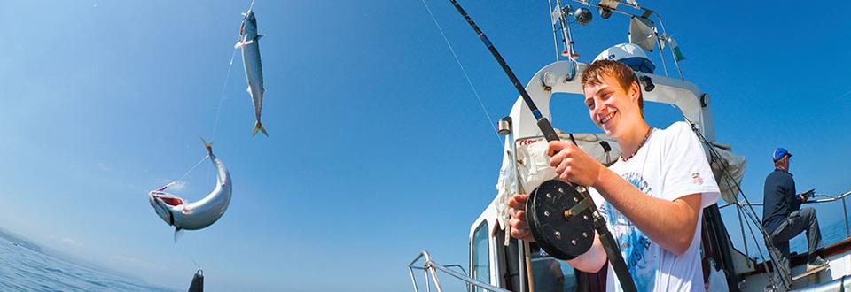 suberb sea fishing