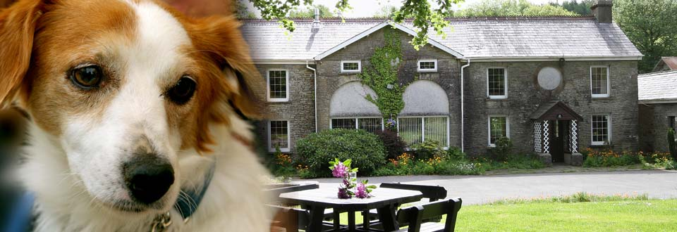 Ty Cerbyd Dog Friendly Holiday Cottages Wales